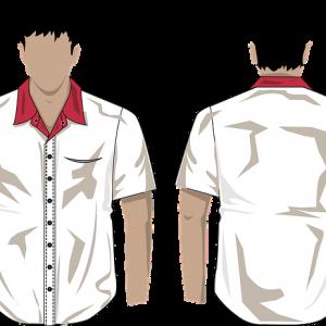 repasser chemise